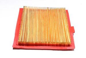 Air Filter Fits Castelgarden GGP RM45 Replaces Part Number 118550147/0