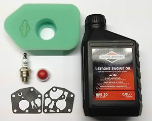 Briggs and Stratton Sprint 375 Early Type Engine Deluxe Overhaul Service Kit (272235S)